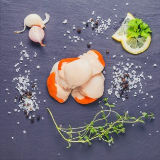 Scallops on a slate background