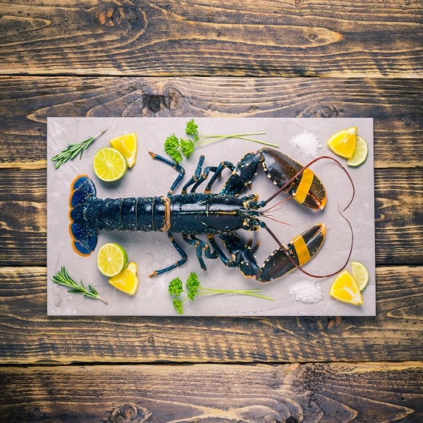 Lobster on a stone background